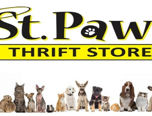 St. Paws: Thrift shopping for a cause