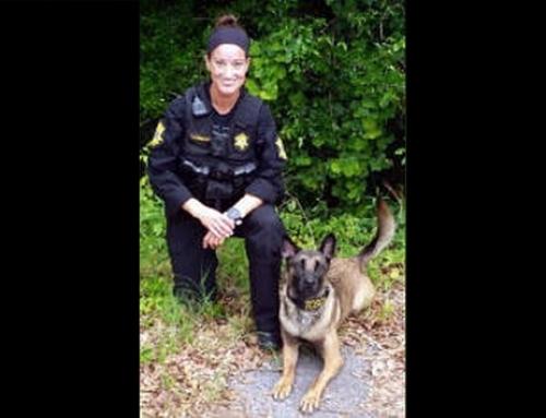Richland County loses K-9 Deputy Tosca